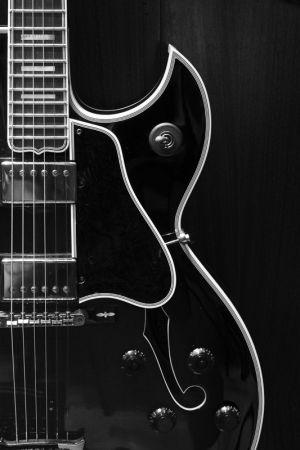 guitar portrait